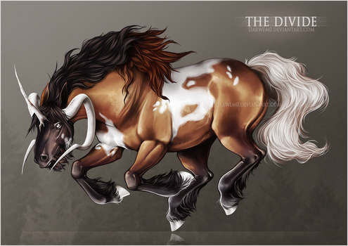 The Divide by Darwem0