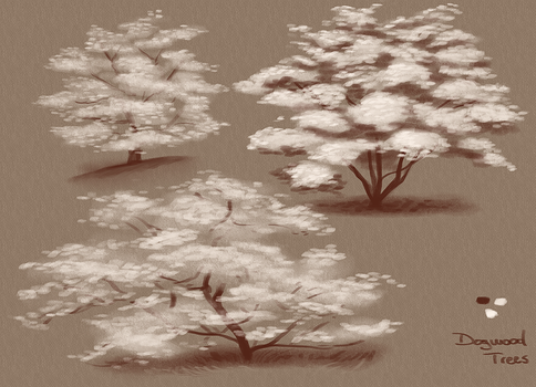150426_DogwoodsTree by PataYoh