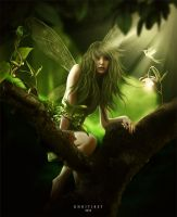 Forest Fairy by khoitibet