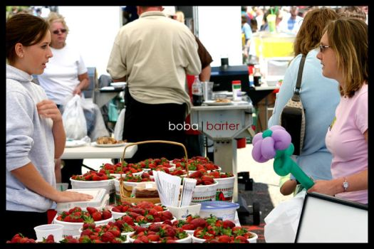 Barter by cboba