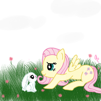 Fluttershy and angel by SaintRiddle
