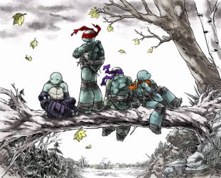 TMNT: Northampton by mooncalfe