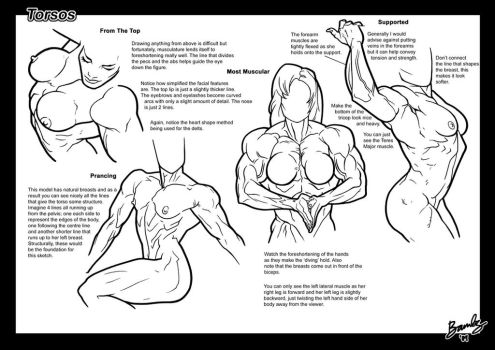 Tutorial: Torsos 3 by Bambs79