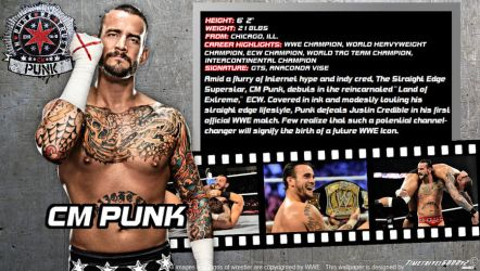 WWE CM Punk ID Wallpaper Widescreen by Timetravel6000v2