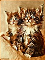 the Cats old style  by Chrisboost94