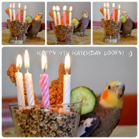Loofy's 4th hatchday! by BubbleCloud