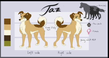 Taz Reference Sheet 2018 by Fecu