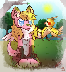 Roket and Citronelle by Roketchu