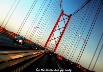 On the bridge and fly awayyy by Pink-label