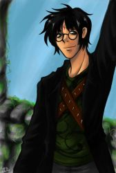 HPotter - Auror in Training by hellslilangel