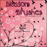 Blossom Brushes by Coby17