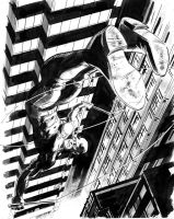 Daredevil by Stephen-Green