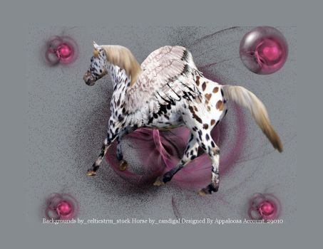 Appaloosa Peggy by courtneykourtney