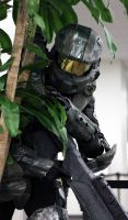 A Familiar Sight... Master Chief #1 by geekypandaphotobox