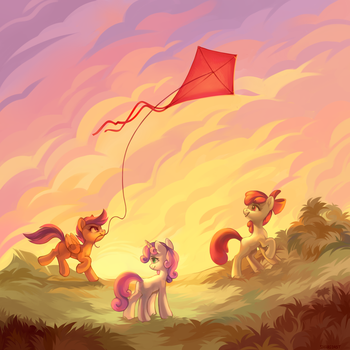 Sunset in the field by ShareDast