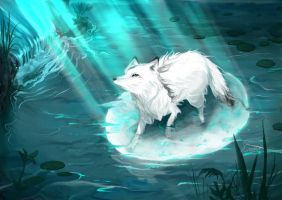 White fox by Aerinn-I