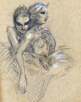 Black Swan Sketch by lilwassu