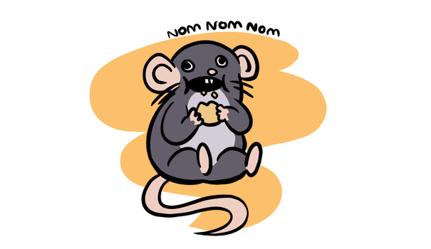 Navi the Rat - Nom Nom Nom by The-Bryce-Is-Right
