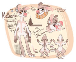 .:Mascot:. Nate ref by B1itzkrieger