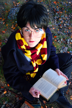 Harry Potter - Studying by the lake by aggestardust