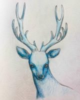 Blue Deer by BetinaFoxyDrawings