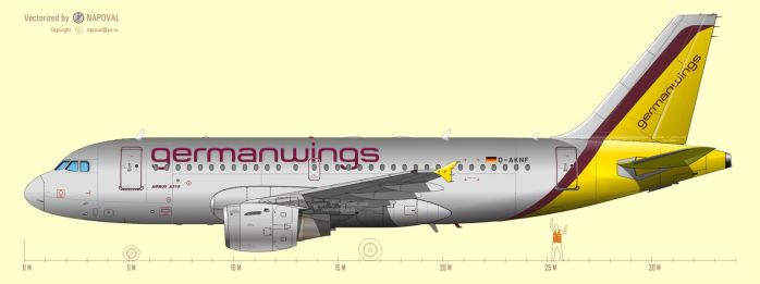 Airbus A319 vectorization by powervectors