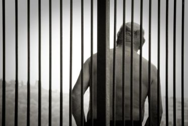 Cage by noc-Photography
