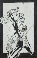 Day # 28 Spiderman by TomatoStyles