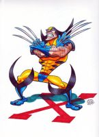 Wolverine by Chad73