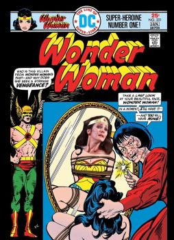 WONDER WOMAN  #221 by oilcan75