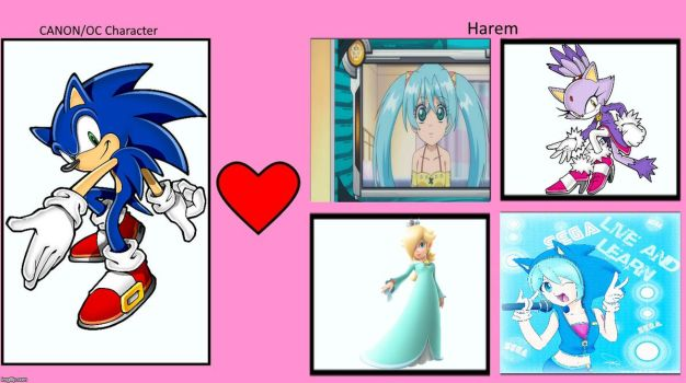 Sonic's Love Interests by ProjectOneAMG