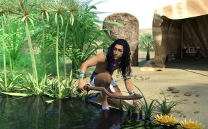 At The Oasis by DiannaSilver