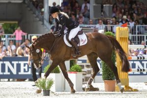 3DE Show Jumping Phase Stock 137 - Stretchin Down by LuDa-Stock
