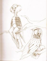 vulture and owl by Harmony-Jade