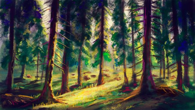 Sunlit forest by vano1337