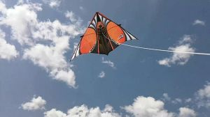 June 15th is Fly a Kite Day by Bennuendo