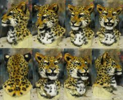 Leopard mask by Crystumes
