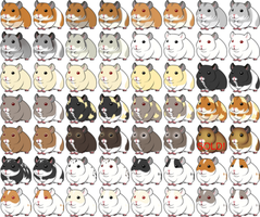 Guinea pig point adoptables by Lovepanda29