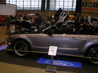 Custom Ford Mustang by crusher500