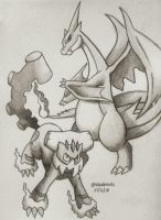 Charizard Y and Landorus-Therian