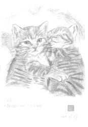 2 Cats by coolwanglu