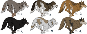 Wolf Adoptables - CLOSED by johndimplechester