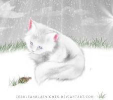 Winter Wonderland .:Contest:. by Annalei