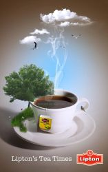 lipton tea by bdpqbd