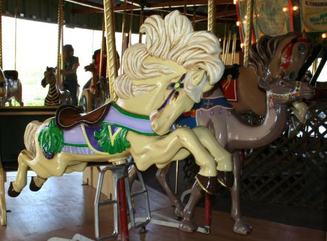 Gage Park Carousel 10 by Falln-Stock