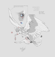 WINGED HUSKY ADOPT AUCTION (closed) by Volinfer