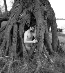 Under the rugged tree by Gomeck