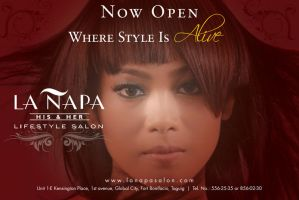 La Napa Salon Banner AD by Click-Art