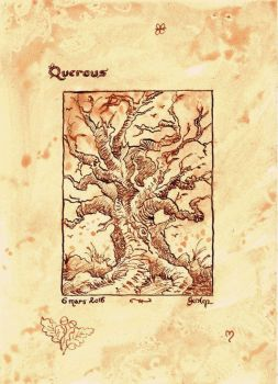 Quercus by GwilymG