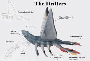 REP: The Drifters by Ramul